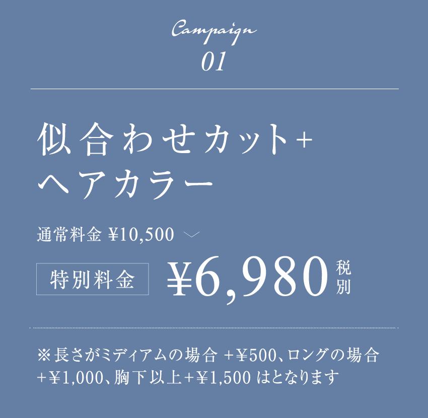 似合わせカット+ヘアカラー