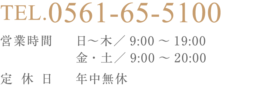 0561-65-5100